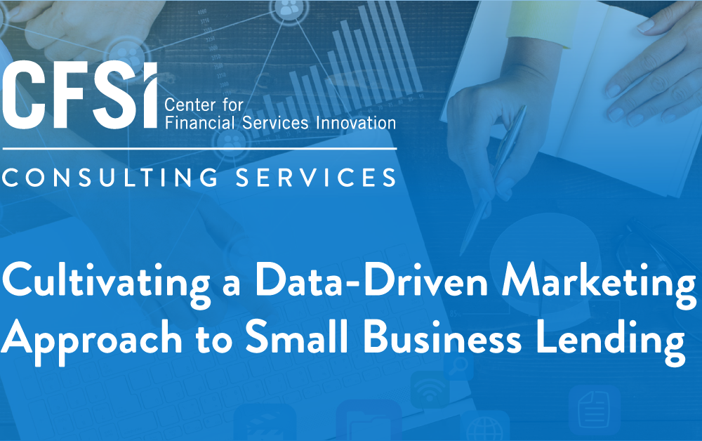 Case Study: Cultivating a Data-Driven Marketing Approach to Small Business Lending